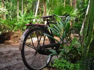 Sepeda butut laGi di parkiran
